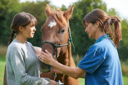 Could Your Horse Have Cushing's Disease?