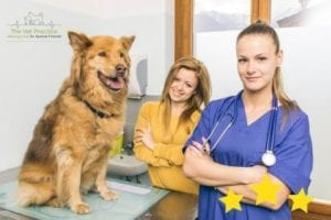 Veterinary Reviews